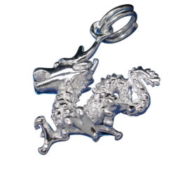 Sterling Silver 17mm Dragon Charm With Split Ring