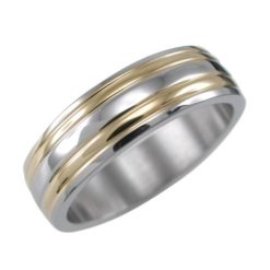 Stainless Steel 6mm Gold Ip Two Tone Lined Ring