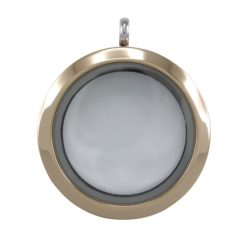 Stainless Steel & Gold Ip Plated (one Side) 30mm Glass Plain Butterfly Memories Locket Pendant